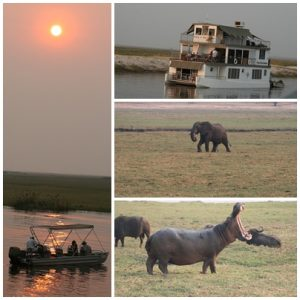 Chobe magic