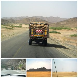 road to port sudan