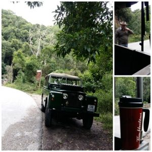 landy coffee